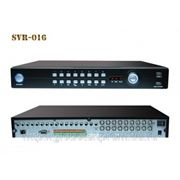 Safari SVR-016