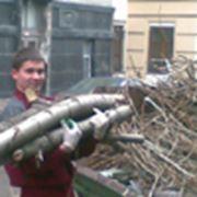 Оперативный вывоз мусора фото