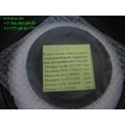 Ремонтный комплект вакуумного усилителя тормоза Газ-3307 фото