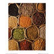 Фасовка круп зернового кофе бобовых орехов сахара фото