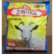 Премикс-концентрат Зинка эконом для коз, козлов фото