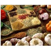 сушка подсушка овощейтравпряностейгрибов и т.д фото