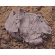 Глина бентонитовая порошкообразная TDS 25795-83 фото