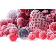 Заморозка плодоовощной продукции фото