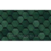 Гибкая черепица TILERCAT ПРИМА Зеленый (3м2/уп) фото