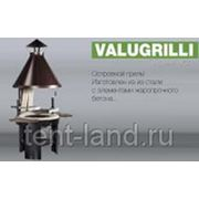 VALUGRILLI® - VGP фото