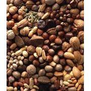 Обжарка орехов всех видов фото
