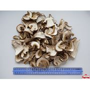 Сушеные белые грибы 1 сорт фото