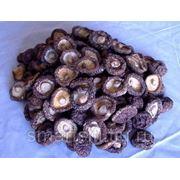 Сушеные грибы шиитаке, 100 г фото