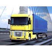 Автомобильные перевозки грузов в Беларусь фото