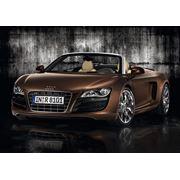 Автомобиль Audi R8 Spyder фото