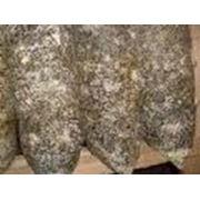 Блоки для выращивания грибов-- ВИШЕНКА фото