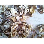 Сушеные грибы древесные, белые Инъер, 100г, пр-во Китай фото