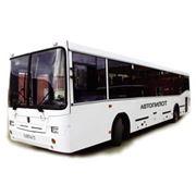 Перевозки автобусные