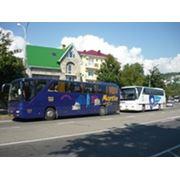 Перевозки автобусные фото