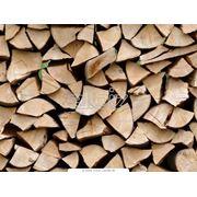 Дрова и топливные древесные брикеты фото