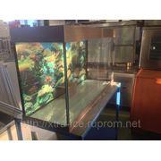Аквариумы для живой рыбы на подставке 500л 150х110х125 фото