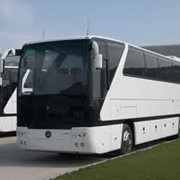 Автобусные междугородные перевозки