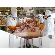 Глубокая мясопереработка фото