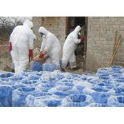 Обезвреживание и утилизация устаревших пестицидов и агрохимикатов фото