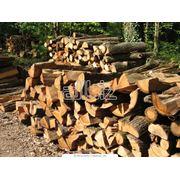Доставка древесины погонажных изделий дров фото