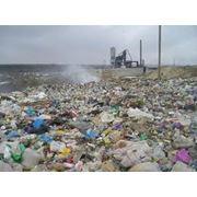 Утилизация бытовых отходов фото
