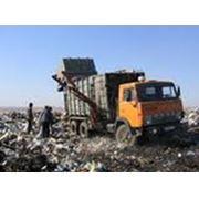 Вывоз и размещение отходов фото