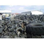 Уничтожение бытовых отходов фото