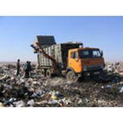 Утилизация и транспортировка отходов фото