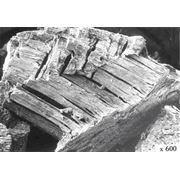 Порошок серебряный аккумуляторный субтрактивный Ag фото
