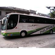 Автобусные туры экскурсии фото