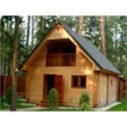 Строительство деревянных бань из кедра фото