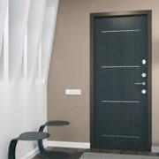 Двери металлические Торэкс Супер Омега 1 фото