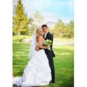 Церемония бракосочетания на базе Авангард фото