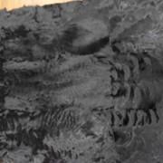 Готовые меховые пластины козлика фото