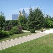 Услуги Садовников Озеленение в Алматы.. фото