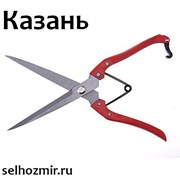 Ножницы для стрижки овец фото