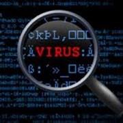 Лечение и удаление вирусов на компьютере фото