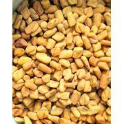 Семена хельбы (пажитника, фенугрека) фото
