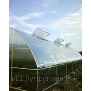 Теплицы промышленные фермерские с покрытием из сотового поликарбоната фото