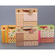 Комплект пакетов из 8 шт.26*32*11 см. (605142) фото