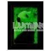 Cветящаяся в темноте фотобумага-пленка InkPRINT Luminofor (PVC) A4, полуглянцевая, 1 лист фото