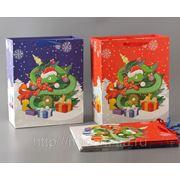 Комплект пакетов бумажных подарочных из 6 шт.32*26*13 см. (759805) фото