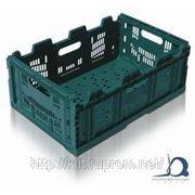 Складные контейнеры XLXS фото