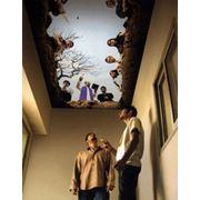 Натяжные потолки Черутти в Котельниках фото