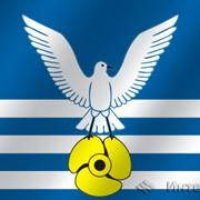 Флаг города Большой камень (Приморский край) фото