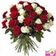 фото предложения ID 330898