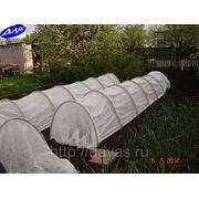 Теплица-парник для защиты рассады от заморозков, 4м х 1,2м х 0,8 м фото