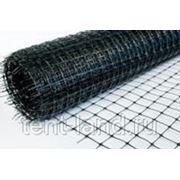 Сетка СТРЭН С6, черный 1,0х25 фото