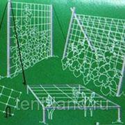 Сетка шпалерная Flora 2 х 10 (ячейка 170х150) фото